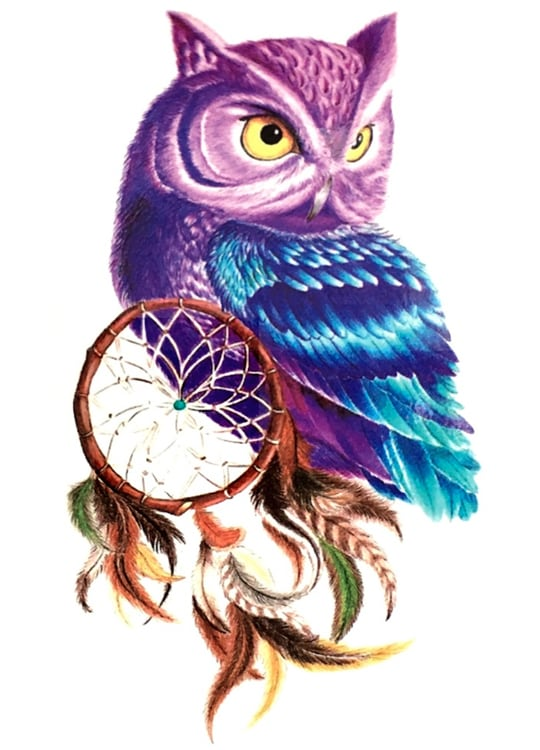 Tatouage Attrapes Reves Hibou Sakari